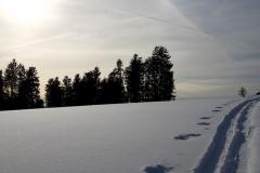 WinterGalerie1