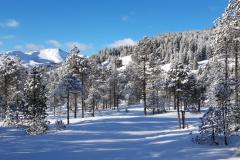 WinterGalerie10