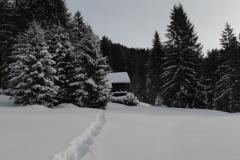 WinterGalerie7