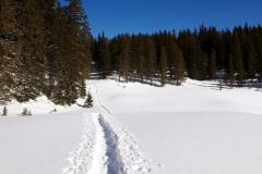 WinterGalerie9
